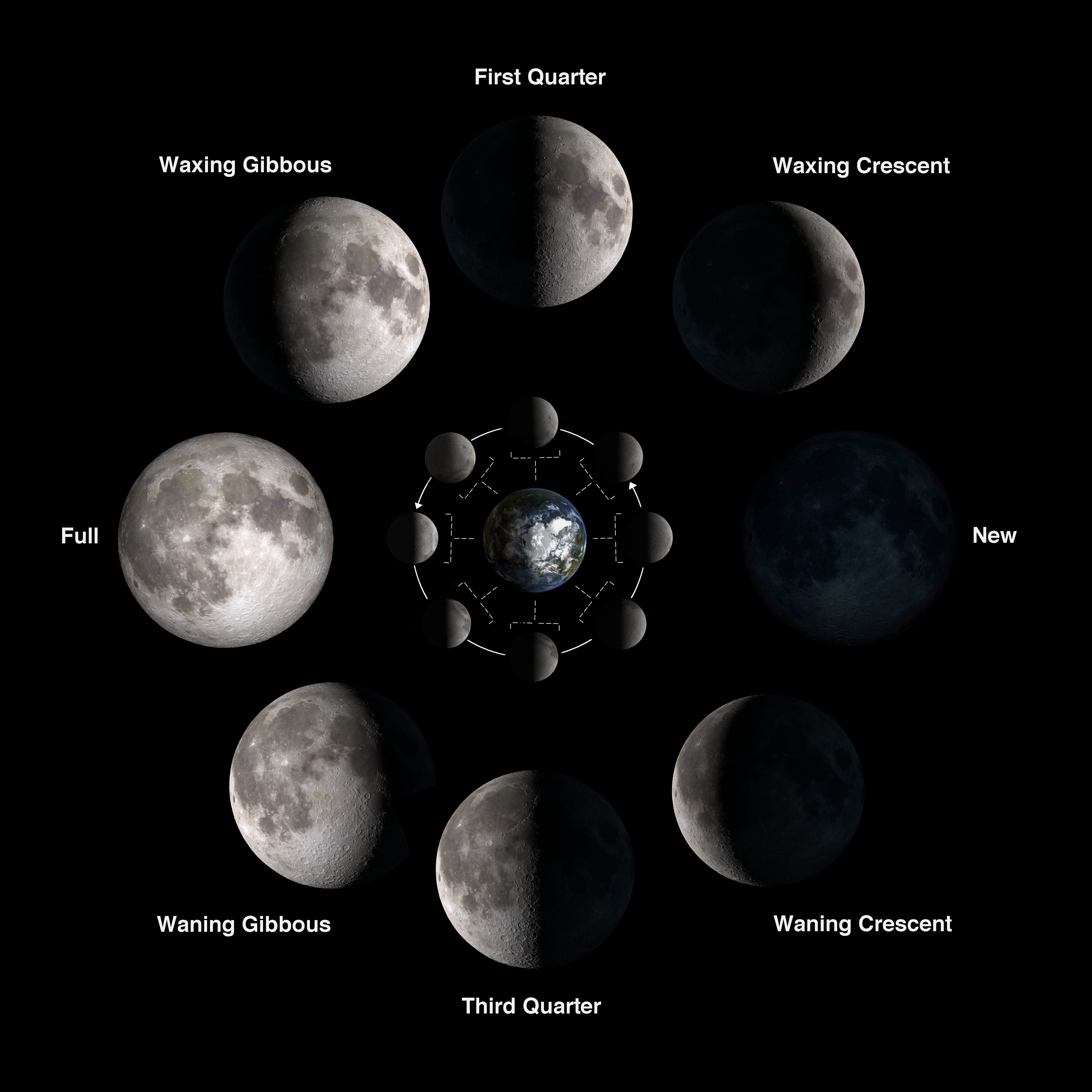 How the phases of the Moon work Credit NASABill Dunford 3728x3728