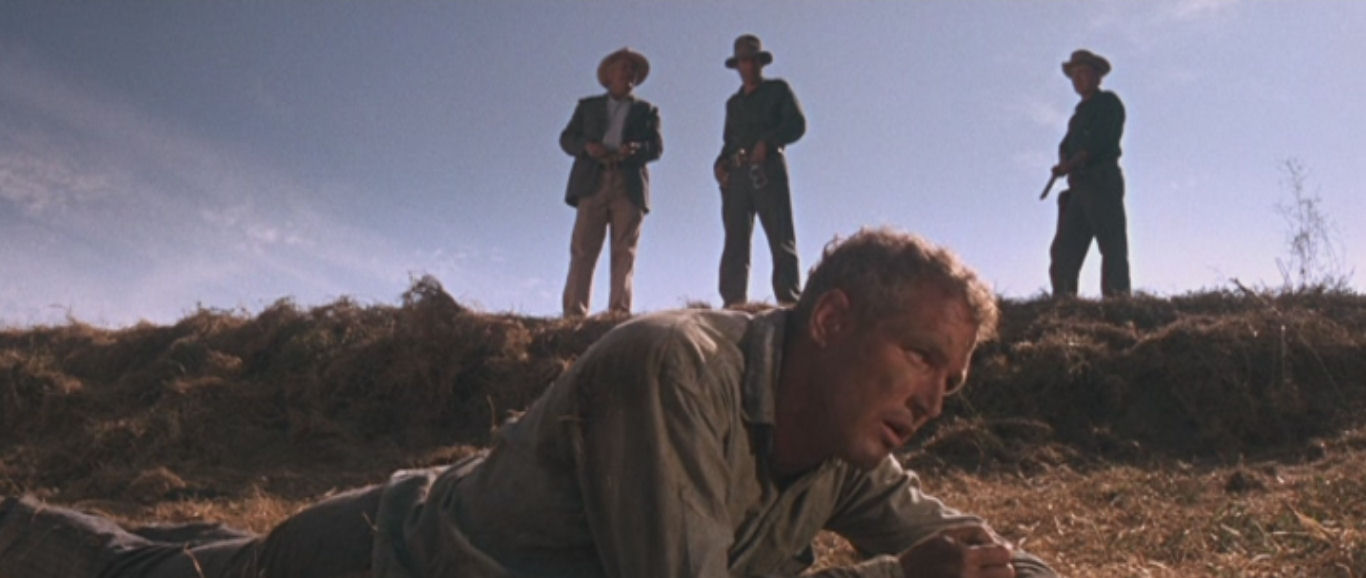 Cool Hand Luke Morgan on Media 1366x578