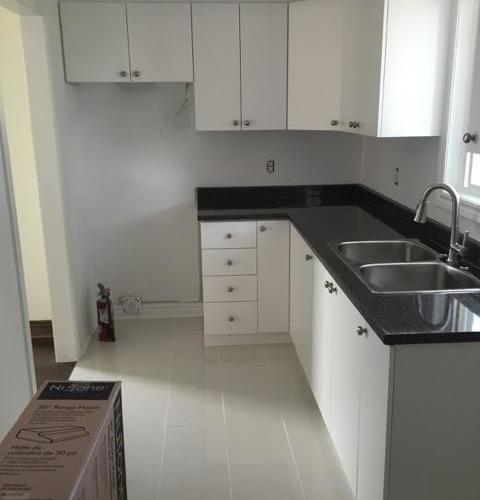 Budget Kitchen Design Ideas Renovations Photos with Flat panel 480x500