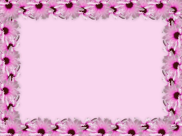 Floral Border 23 Pink floral border on blank page Lots of copyspace 600x450