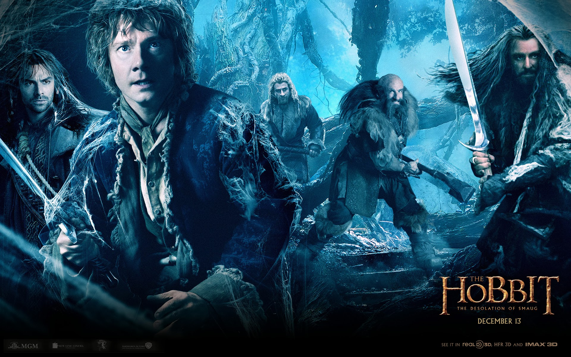 The Hobbit 2013 Movie   Wallpaper High Definition High 1920x1200