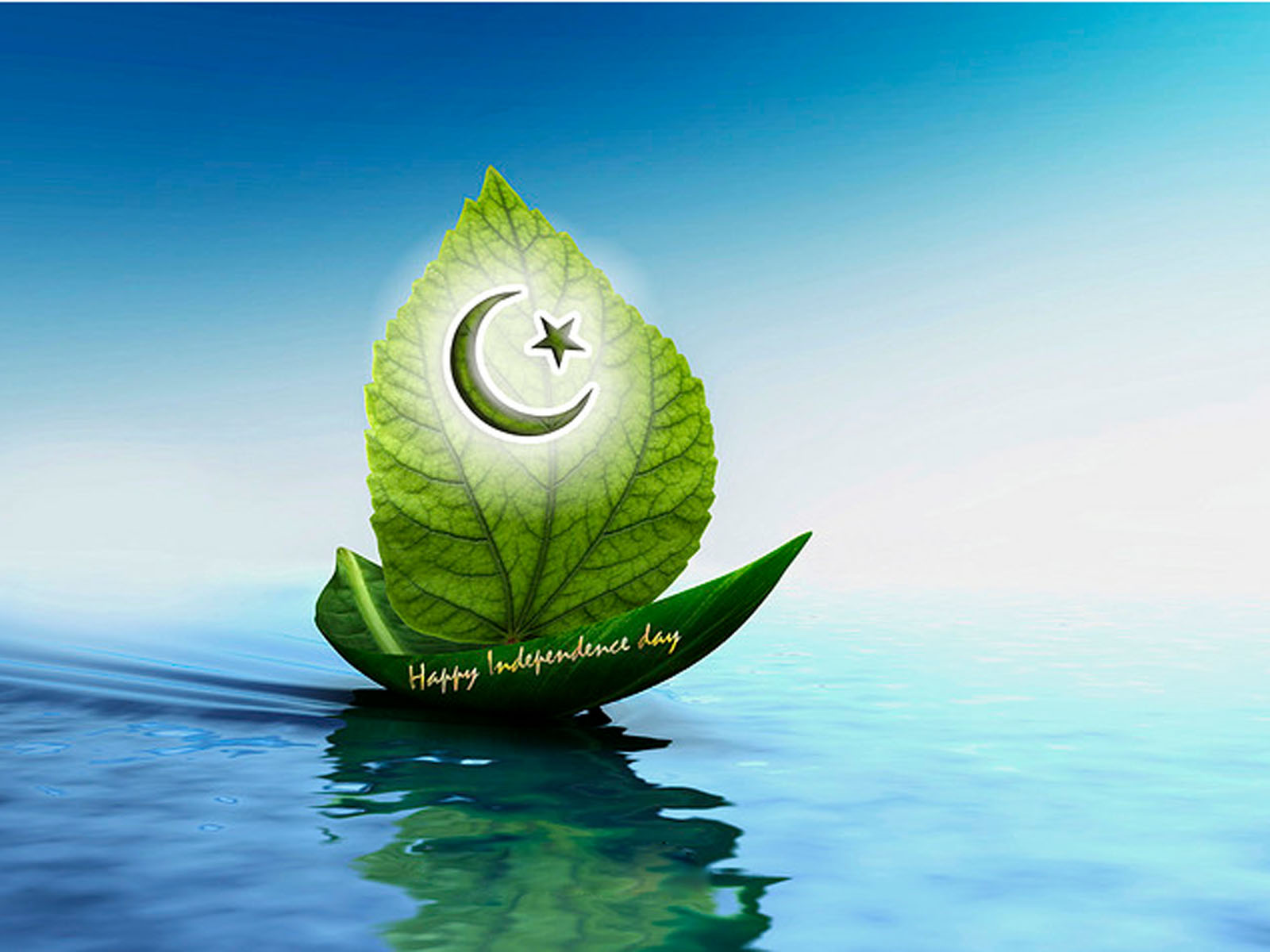 Pakistan Flag Beautiful Wallpapers   2013 Wallpapers 1600x1200