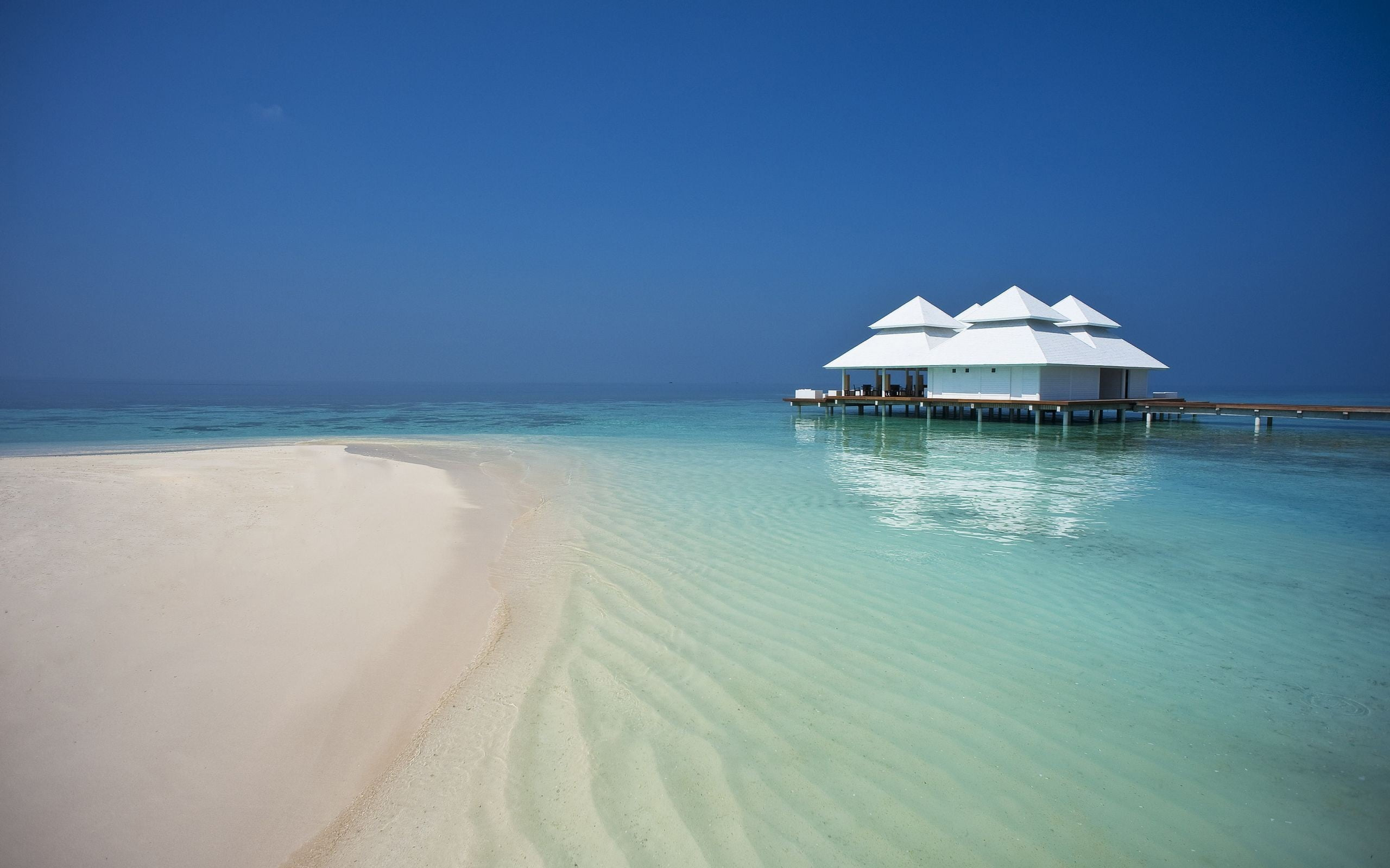 White and brown beach cottage beach waterfront Maldives nature 2560x1600