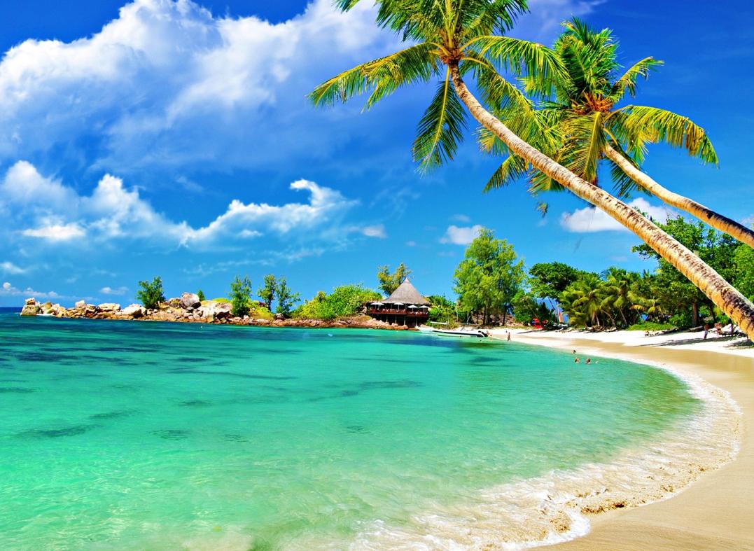 Free Download Sfondi Hd Spiaggia Tropicale Pc Wallpaper Sfondi