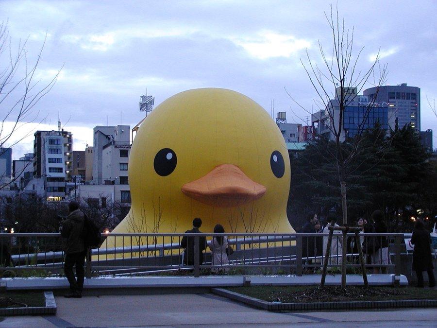 Giant Rubber Duck 05 by nicojay 900x675