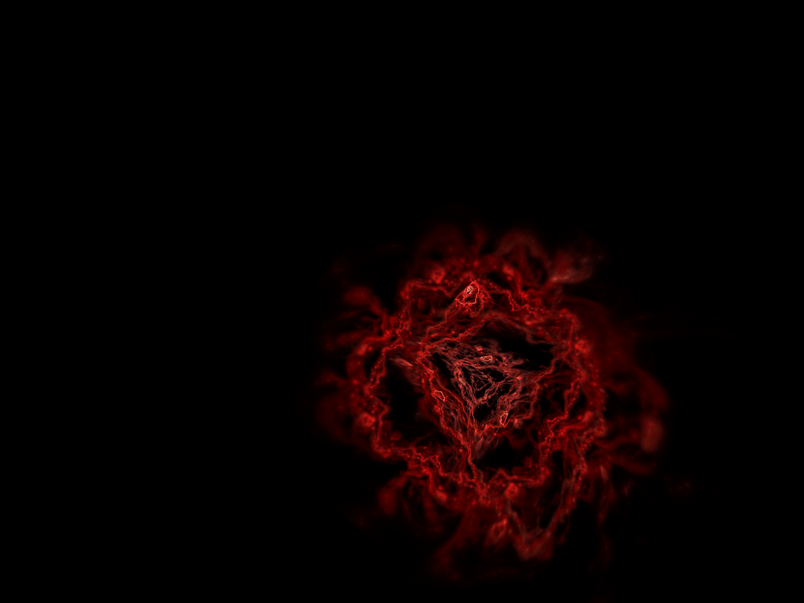 Red Rose With Black Backgrounds 1600x1200