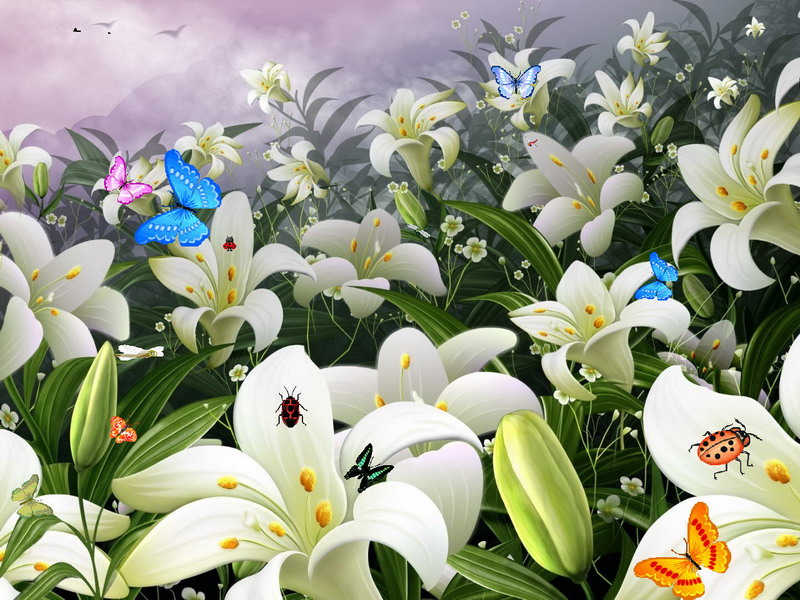 Flowers Screensaver Flowers And Butterflies FullScreensaverscom 800x600