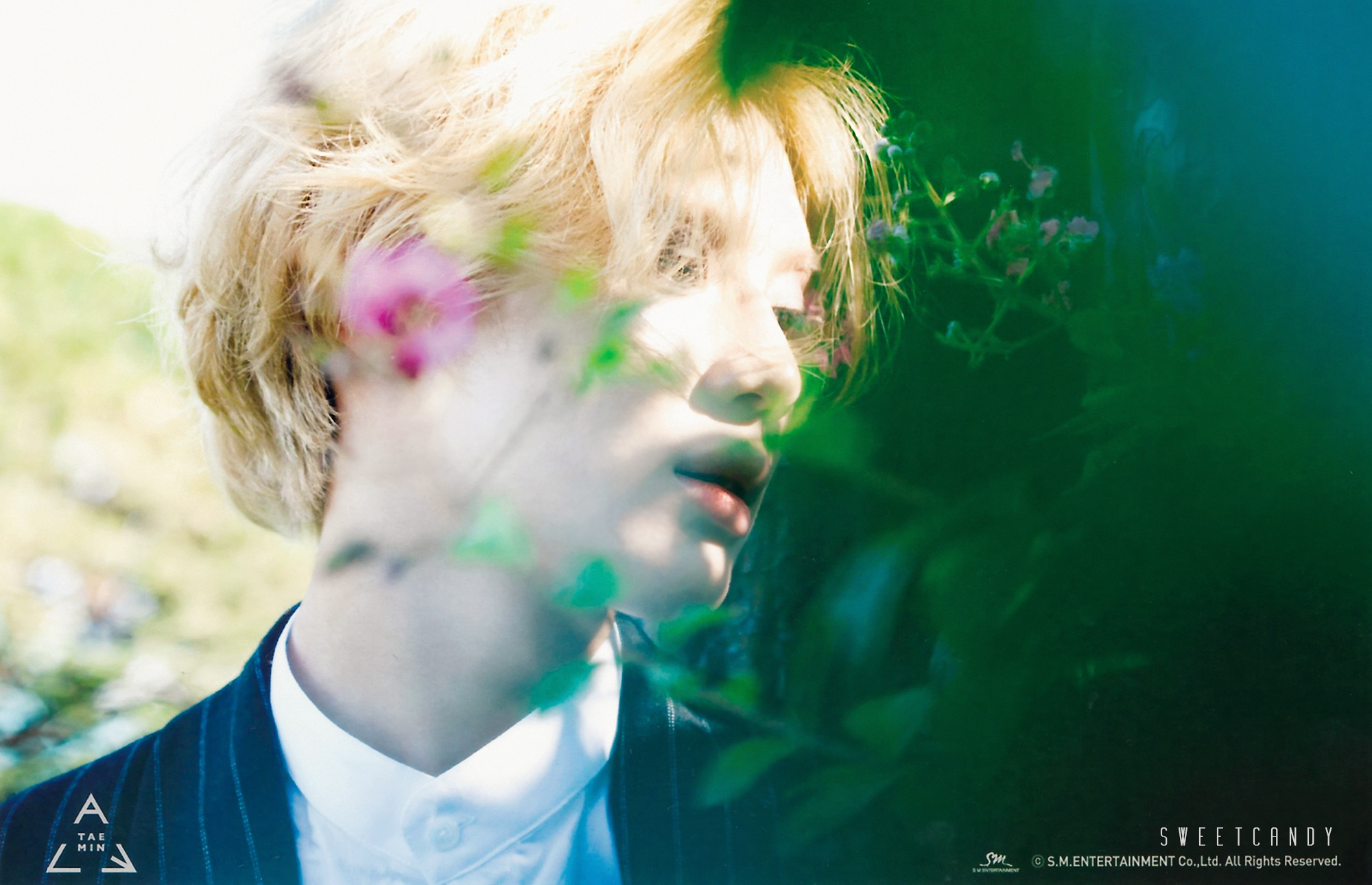 SHINee Taemin   Lee Taemin Wallpaper 37577496 2000x1290