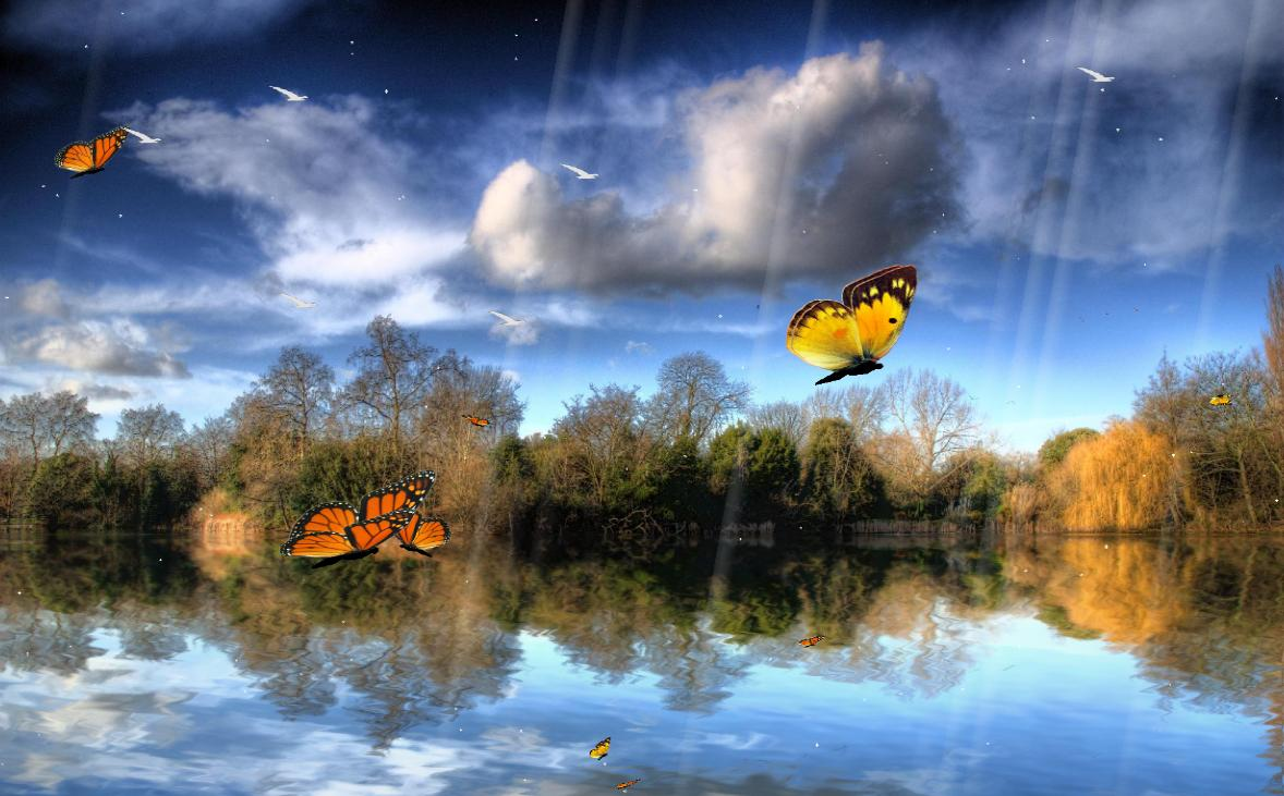 User reviews of Butterfly Lake Screensaver 10 1178x731