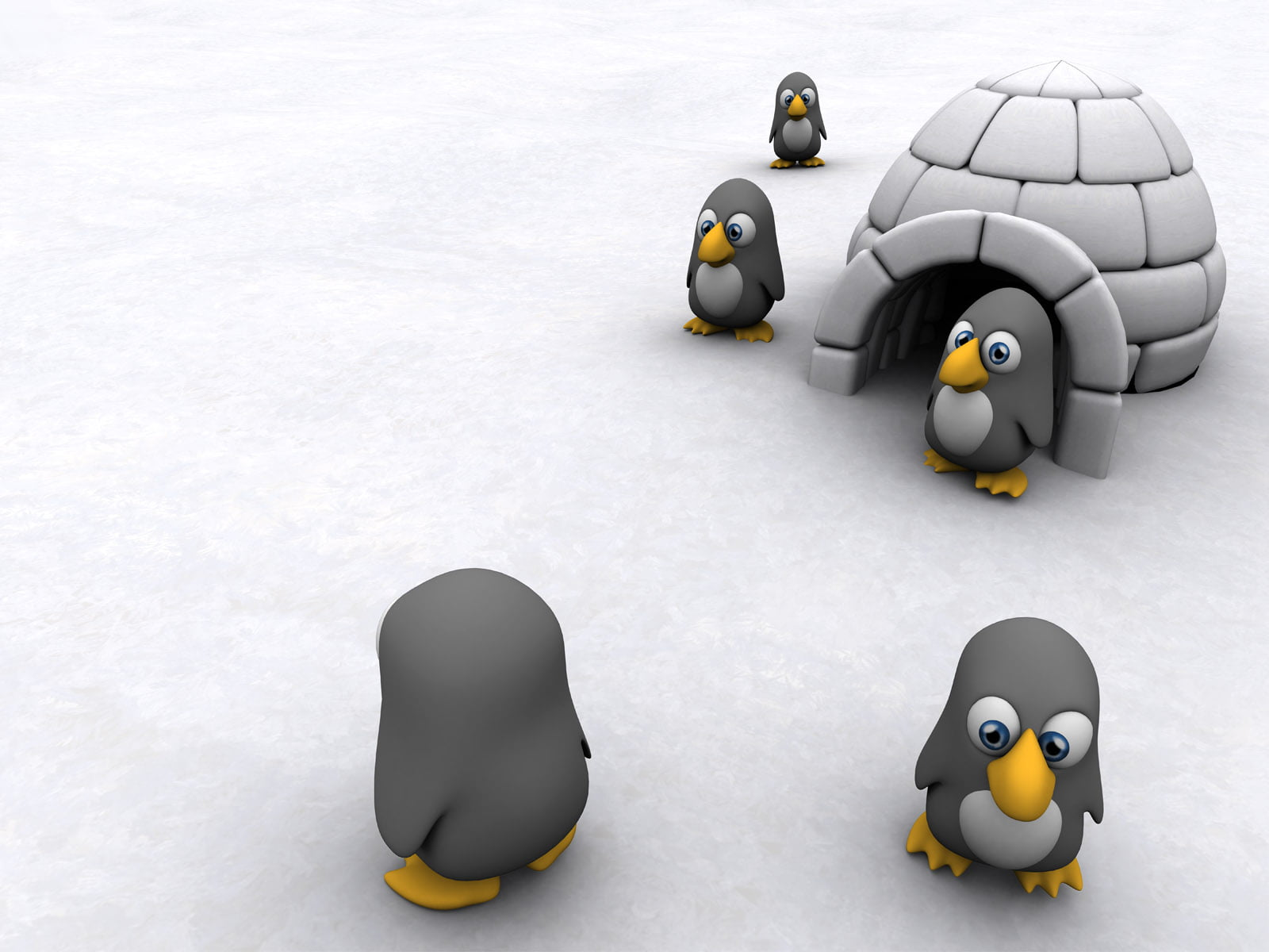 HD wallpaper Maximum Cool five black penguins wallpaper 3D 1600x1200