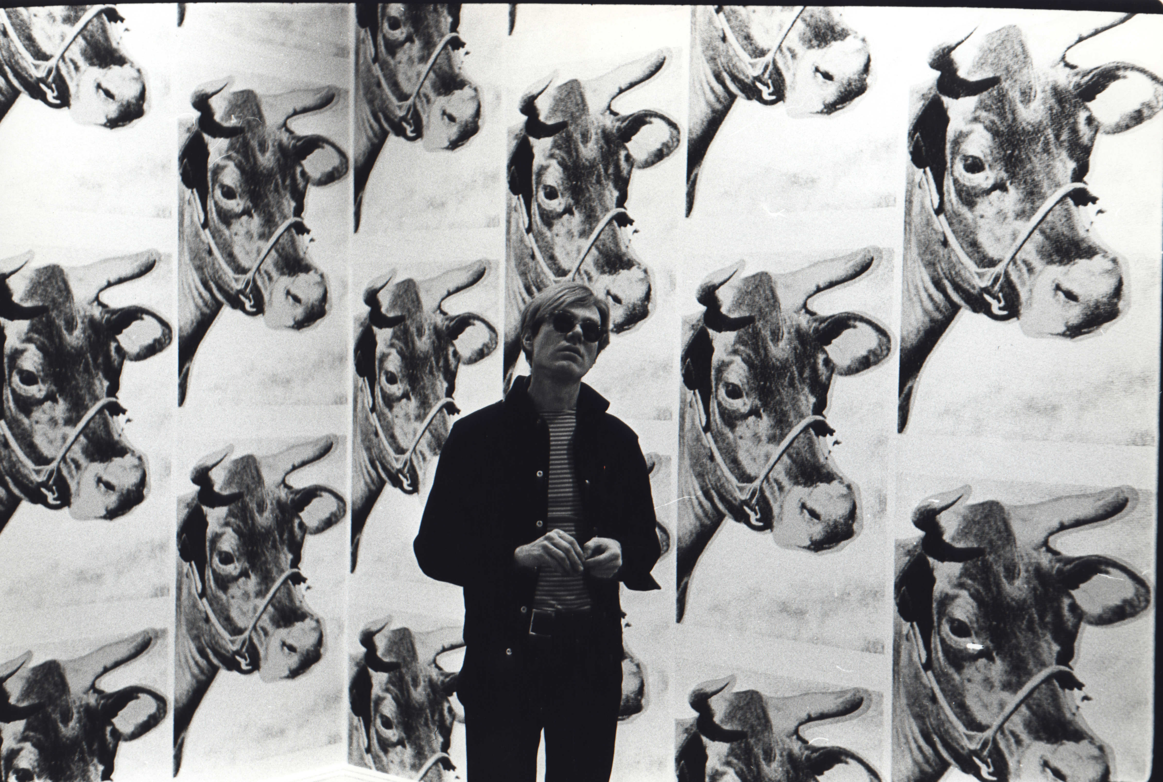 Cow Wallpaper Warhol Cow Wallpaper Exhibited at 4786x3220