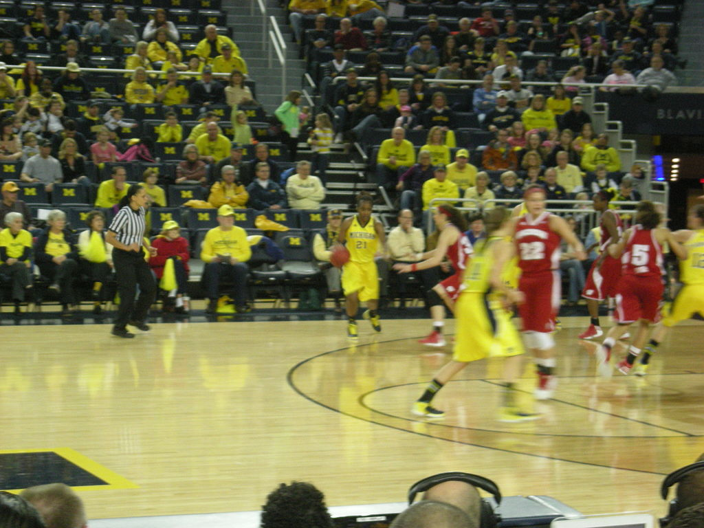 wwwsmscscomphotomichigan wolverines basketball wallpaper3html 1024x768