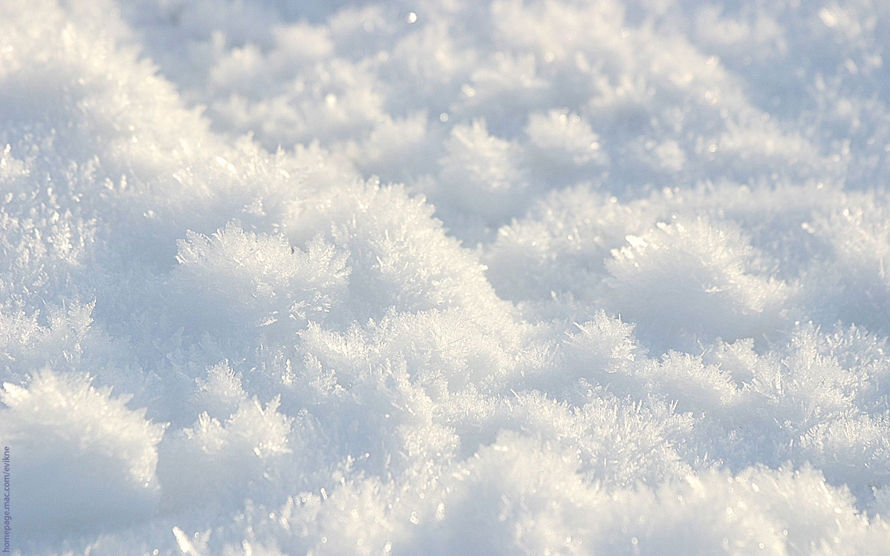 Download Winter Snow Wallpapers 1280x800