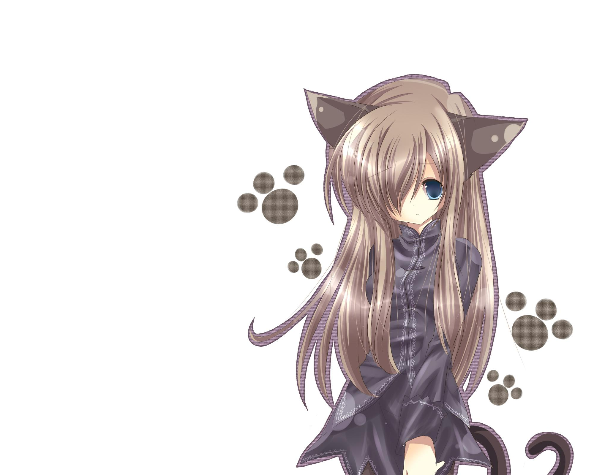 Neko Girl Wallpaper Pack 2 Randomness Thing 2000x1600