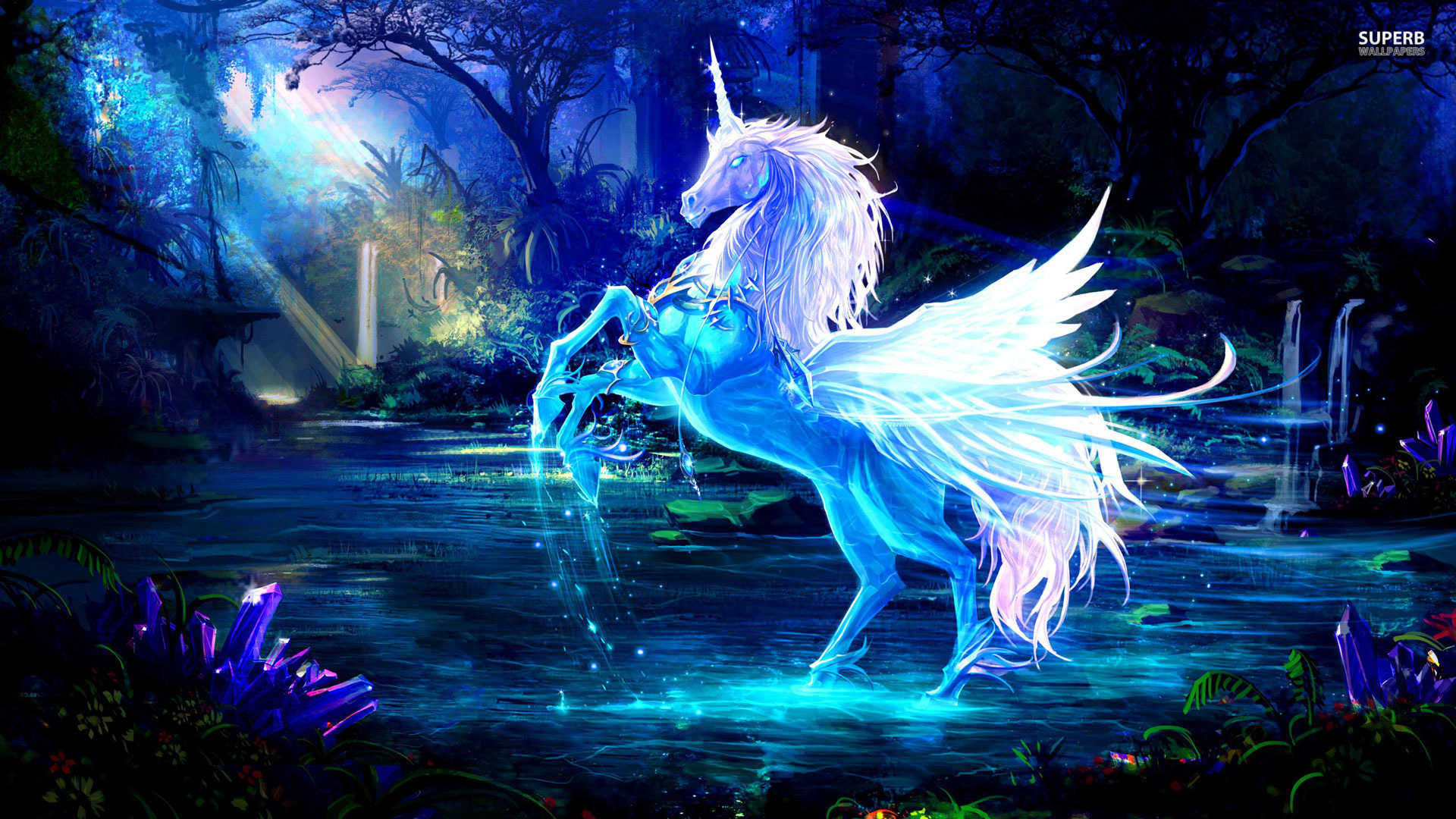 Real Unicorn Wallpaper Images amp Pictures   Becuo 1920x1080