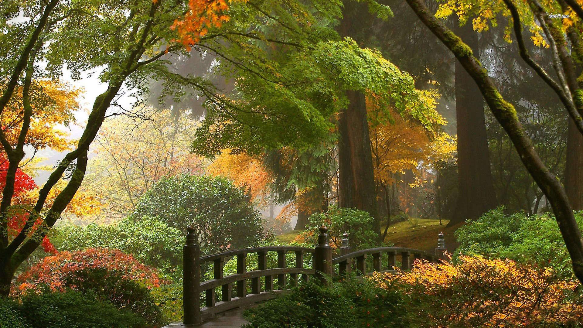 Japanese Garden HD Wallpapers 1920x1080