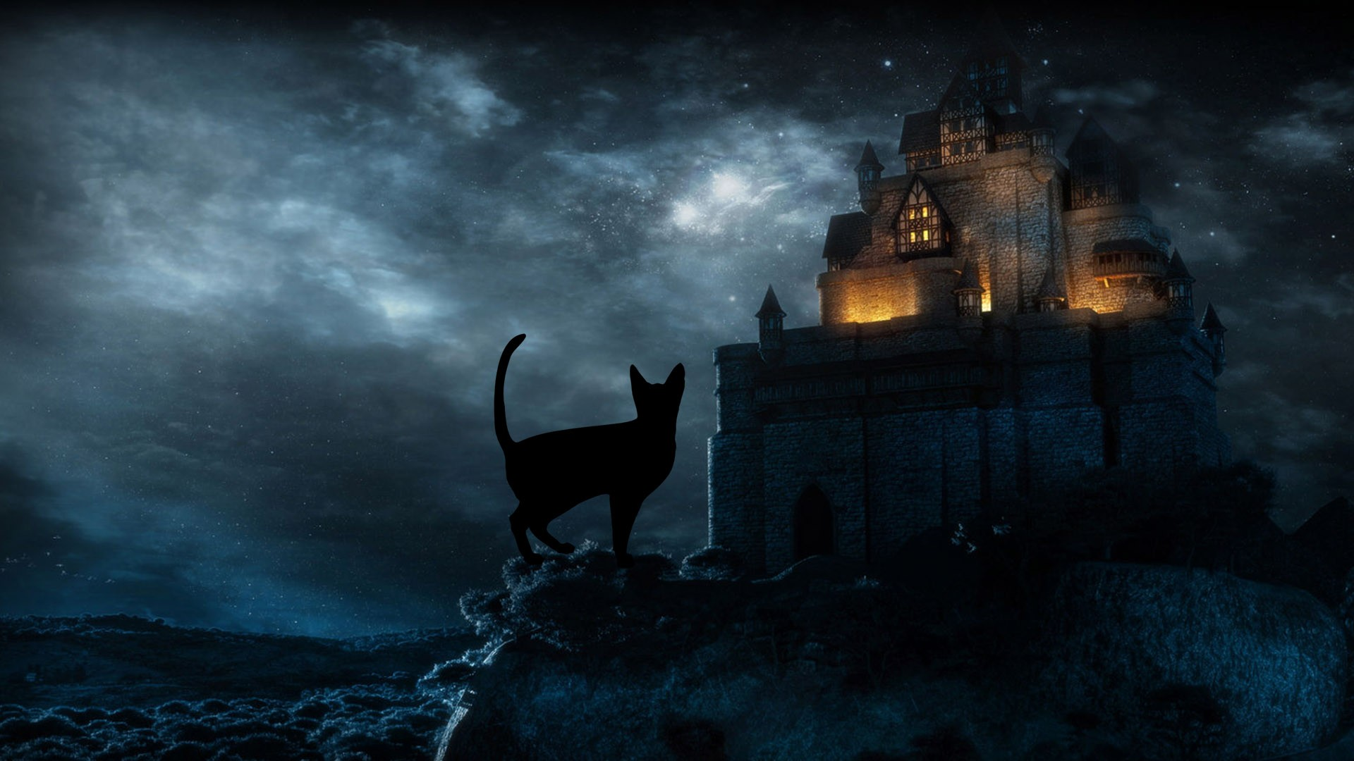 Halloween Black Cat HD Desktop Wallpapers 34269   Baltana 1920x1080