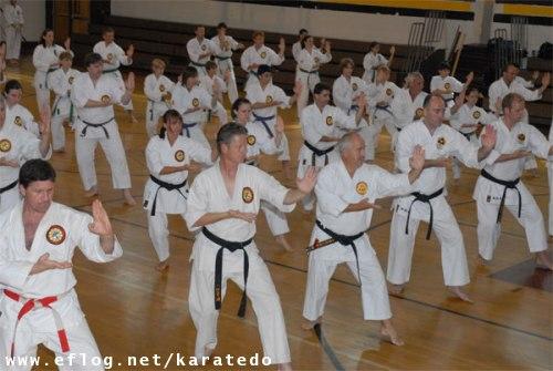 karate dokung fulondrinacuritibablumenaujoinvilleflorianpolis 500x335