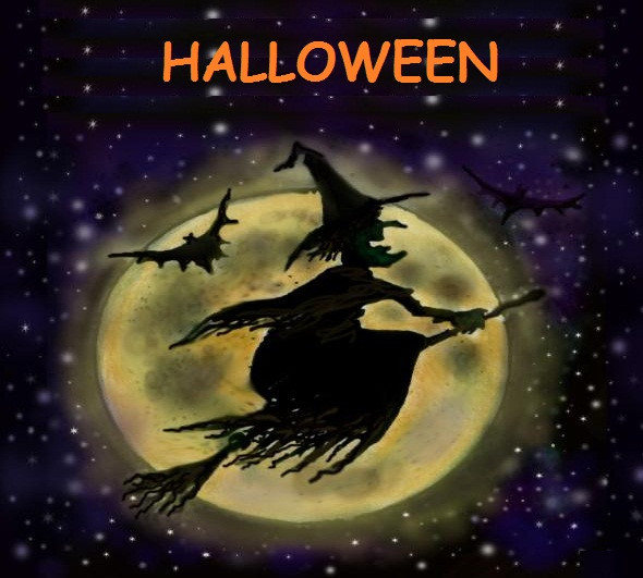 Halloween Witch And Moon Wallpaper 590x531