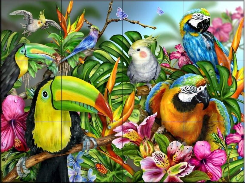 azulejo de la pared de aves tropicales wallpaper   ForWallpapercom 808x606