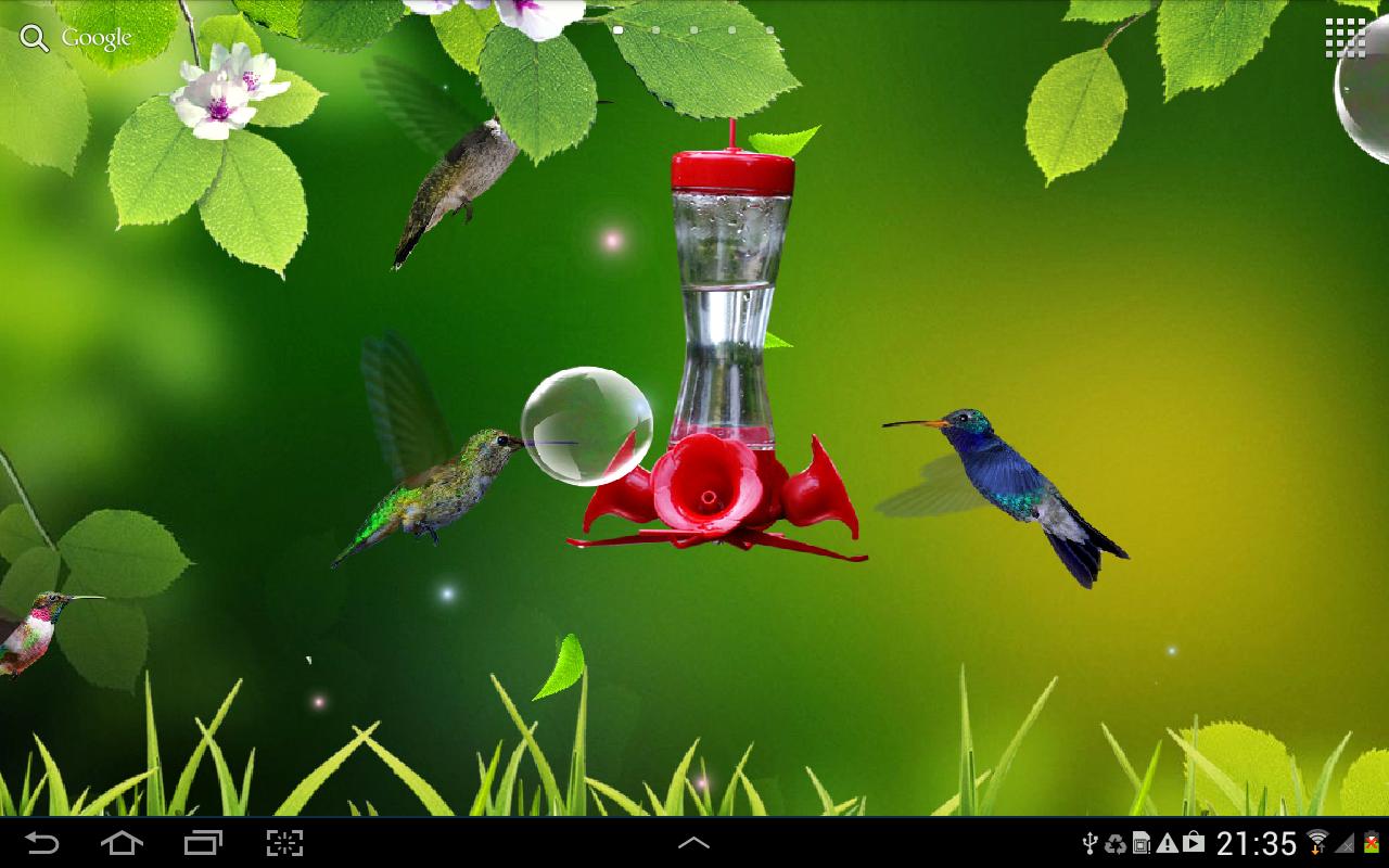 free live wallpaper hummingbirds wallpaper colibries live wallpaper 1280x800