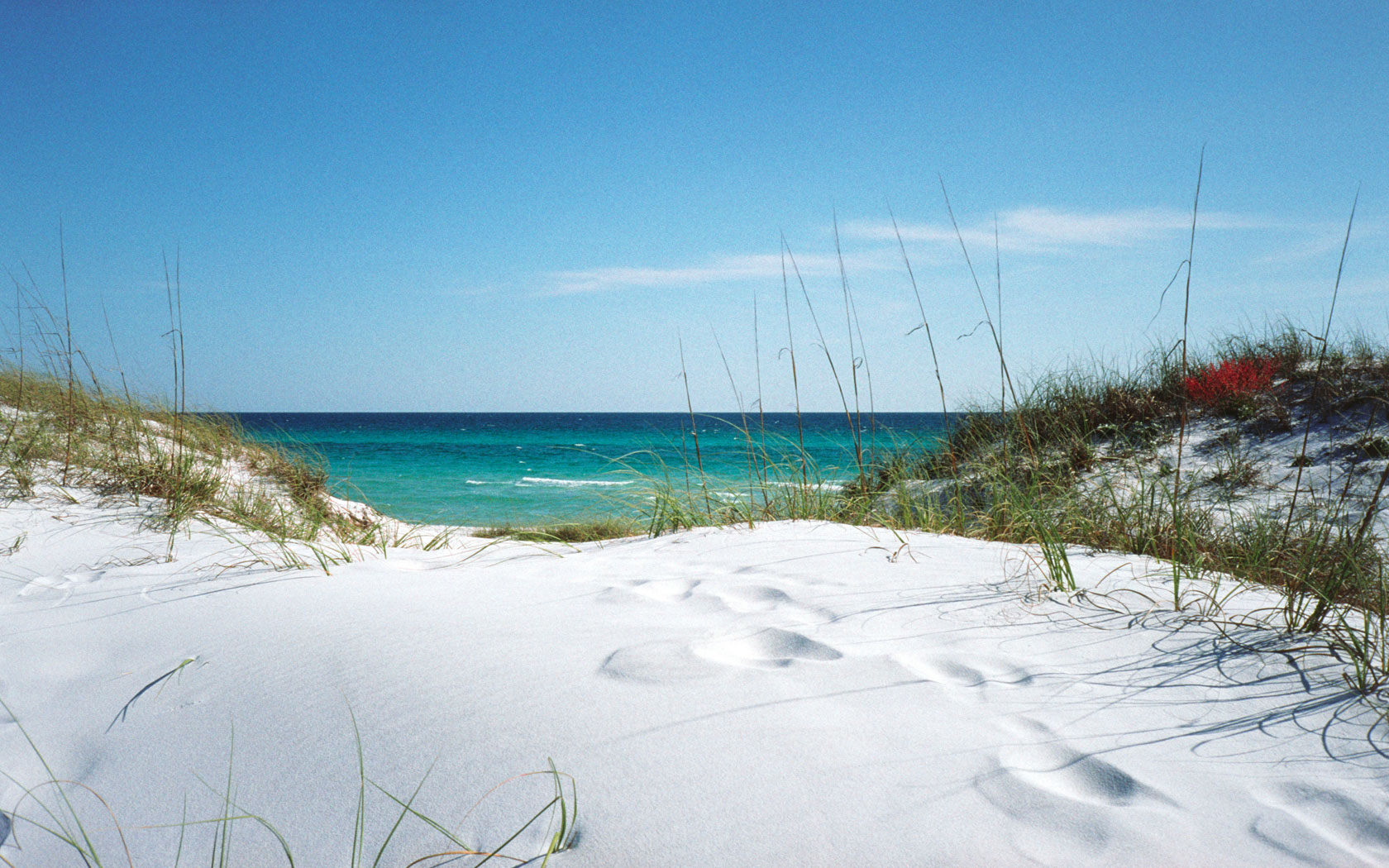 Wallpaper Clearwater Fl: Florida Beach Scene Wallpaper