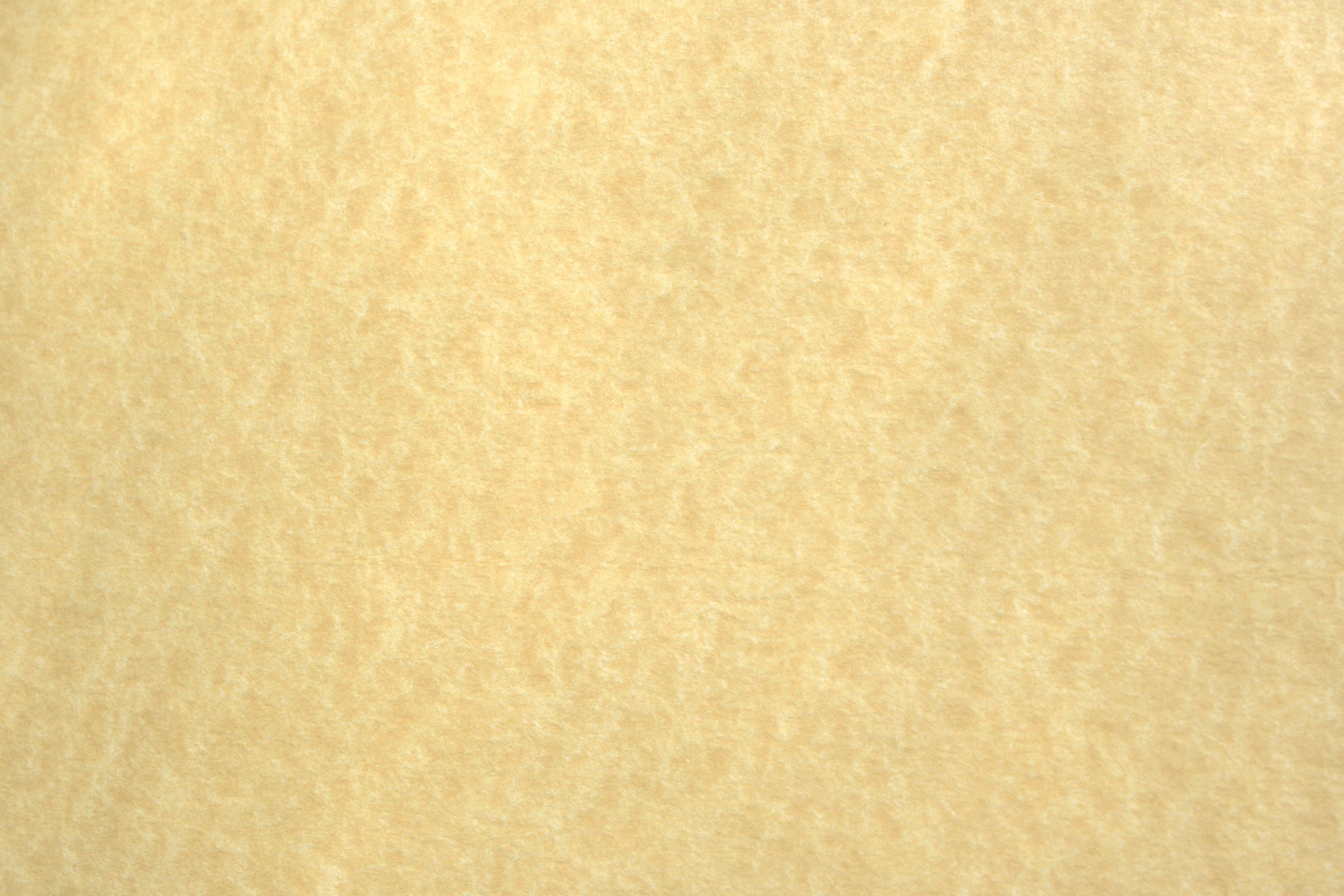 Light Colored Parchment Paper Texture   High Resolution Photo 3888x2592