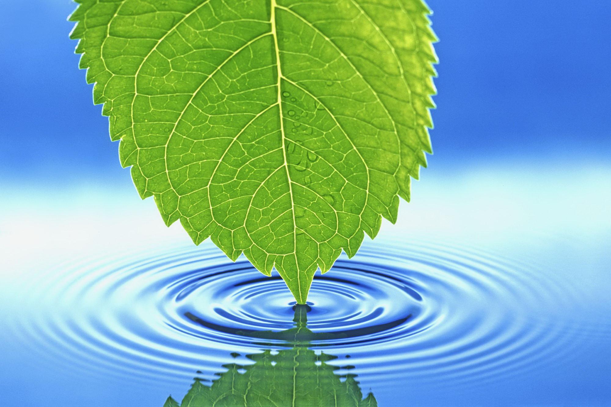 Cool Nature Desktop Backgrounds Desktop Backgrounds 2000x1333