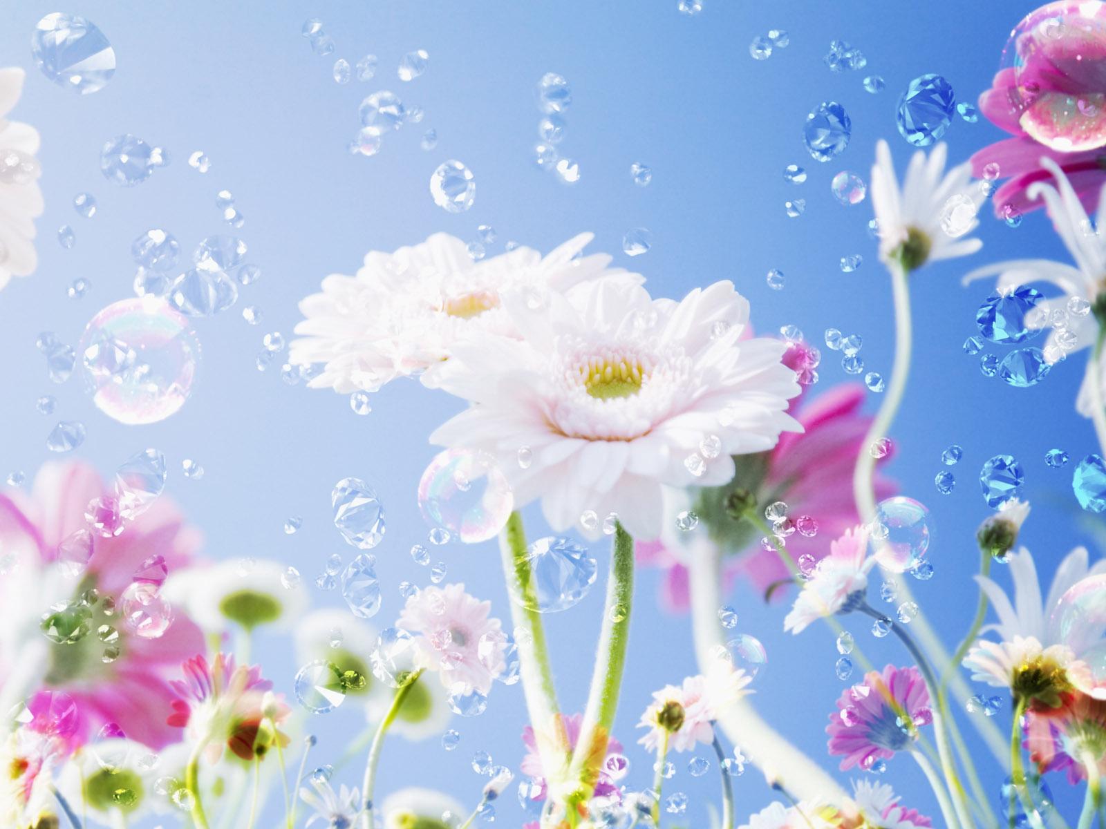 Pretty Flower Backgrounds wallpaper wallpaper hd background 1600x1200