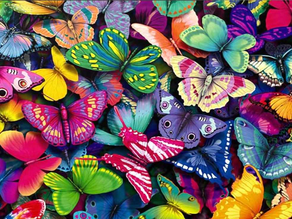 Fantastic Butterfly Screensaver   Animated Wallpaper Torrent Download 983x736