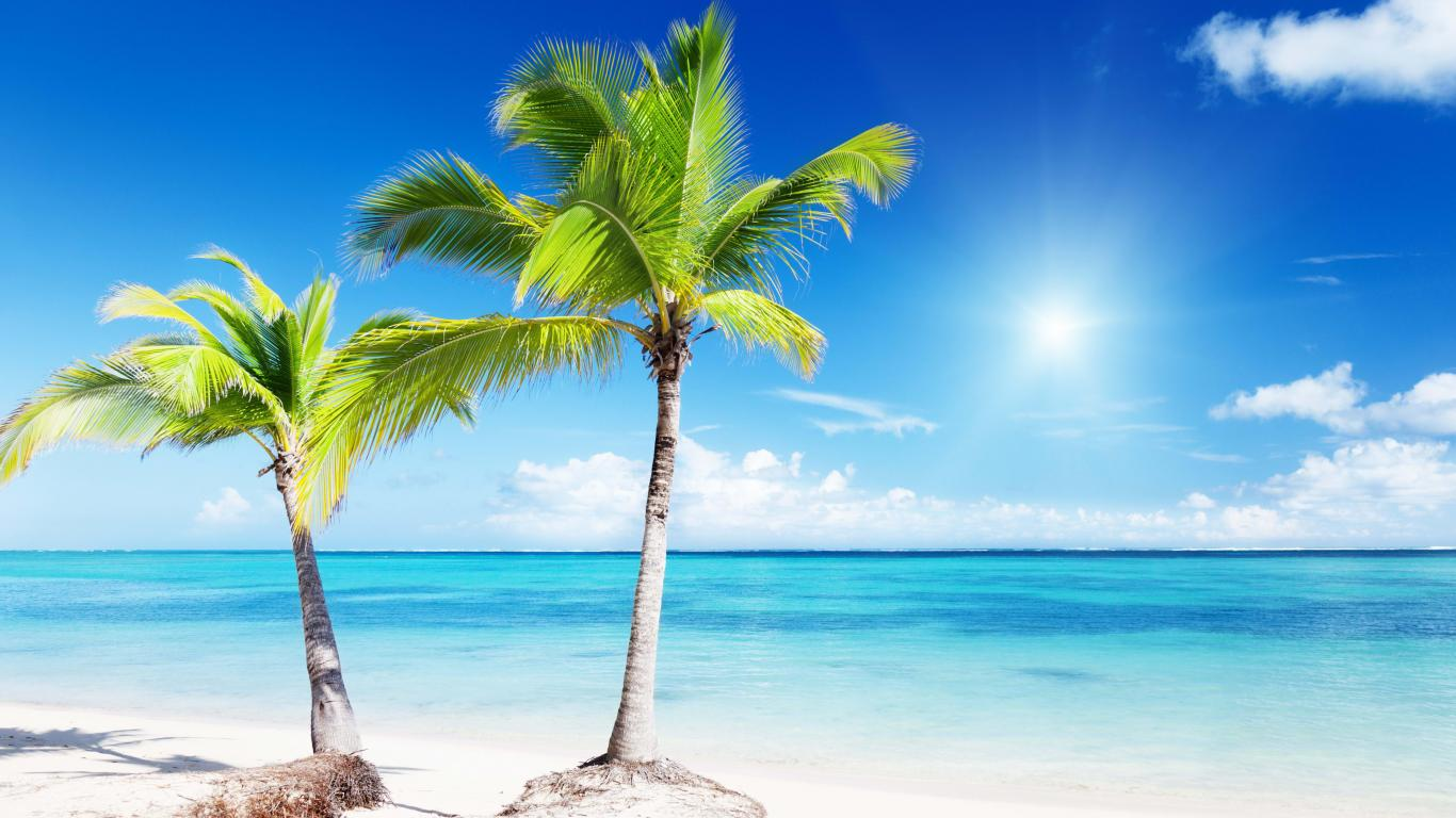 Tropical paradise   133494   High Quality and Resolution Wallpapers 1366x768