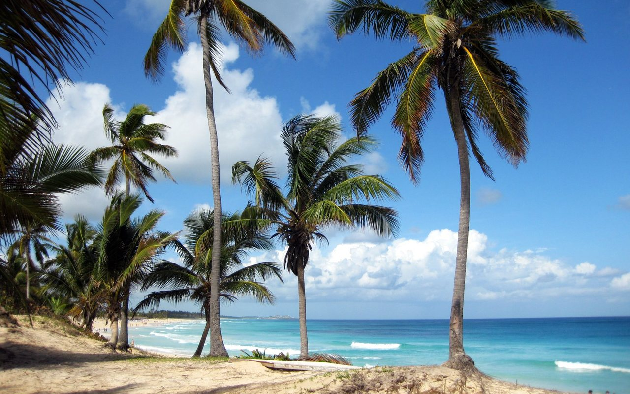 Paisajes Punta Cana Republica Dominicana RD wallpaper download 1280x800