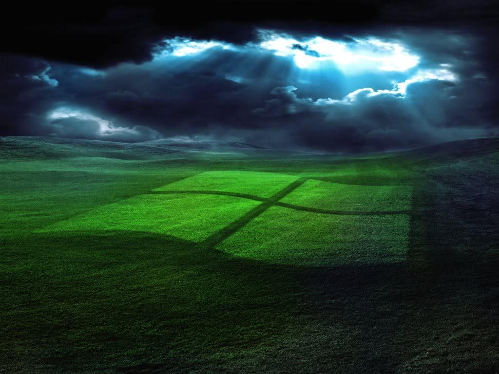 Windows Grass Wallpaper Background Theme Desktop 1024x768