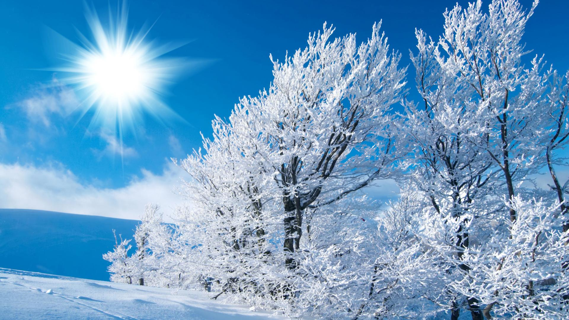 Backgrounds Winter Desktop Wallpapers For Windows 7 Mac 1920x1080