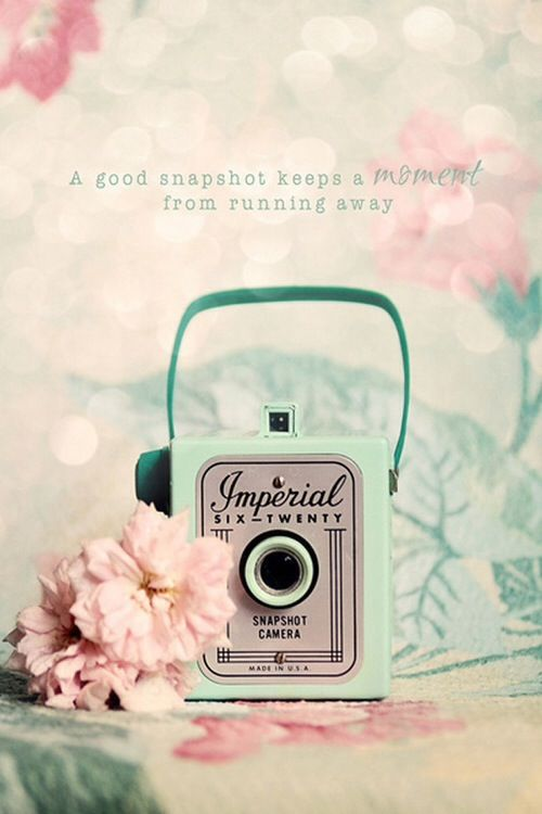 vintage wallie wallpaper cute camera pink iPhone Pinterest 500x750