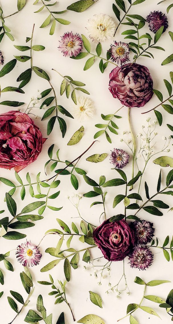 Phone Wallpaper Prints in 2019 Floral wallpaper iphone Flower 607x1136
