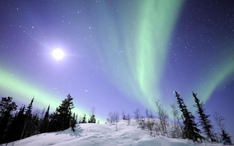 Aurora Borealis 800x500