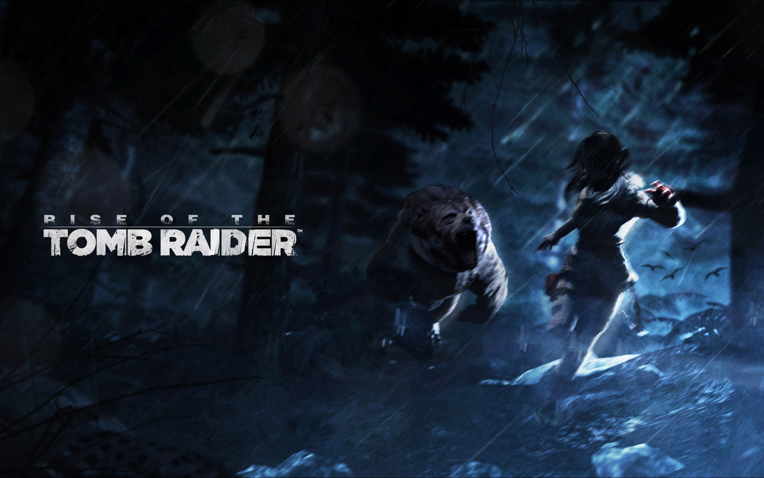 Free Download Rise Of The Tomb Raider Hd Wallpapers And Background