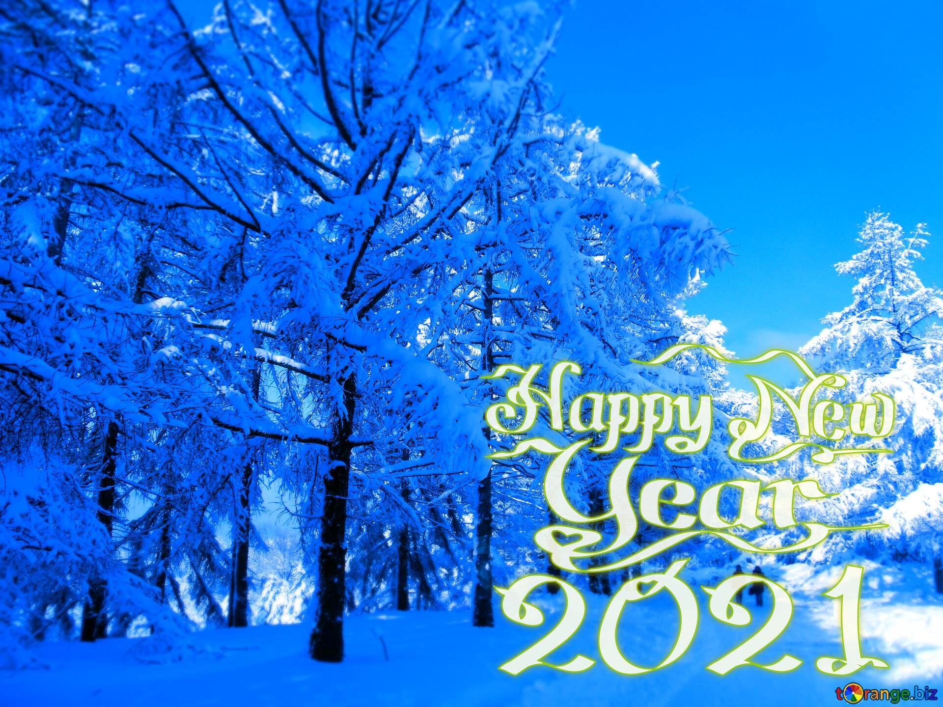 Download picture happy new year 2021 Snow Winter blue forest 1920x1440
