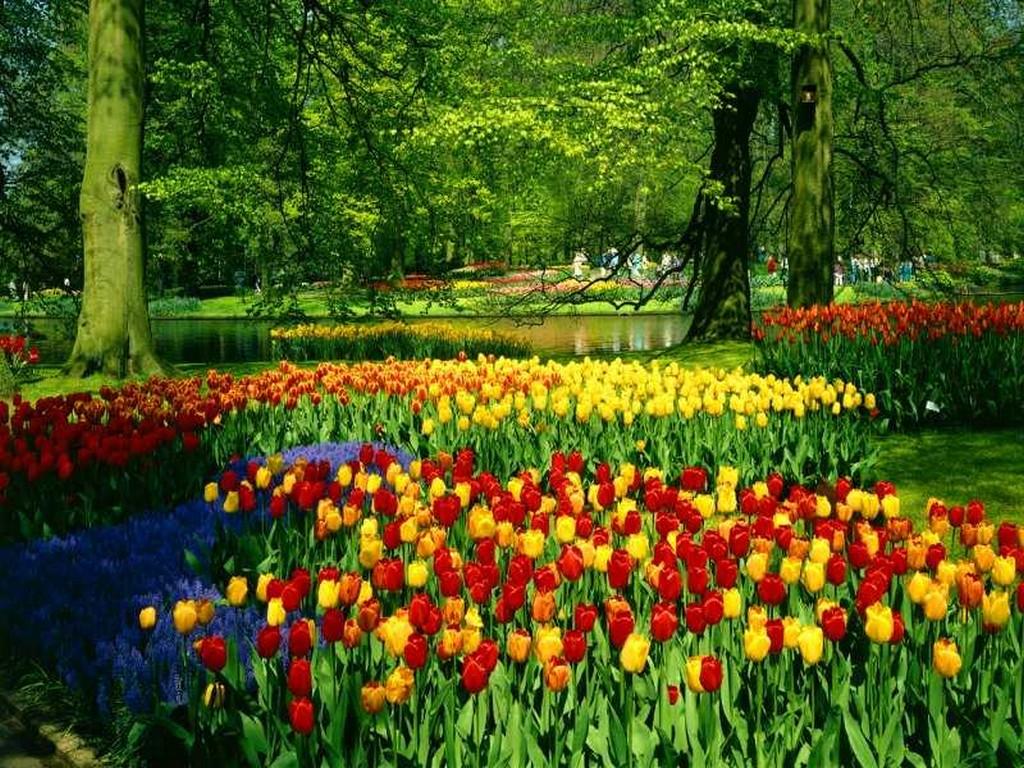 Season Wallpapers Spring desktop Wallpaper 1024x768