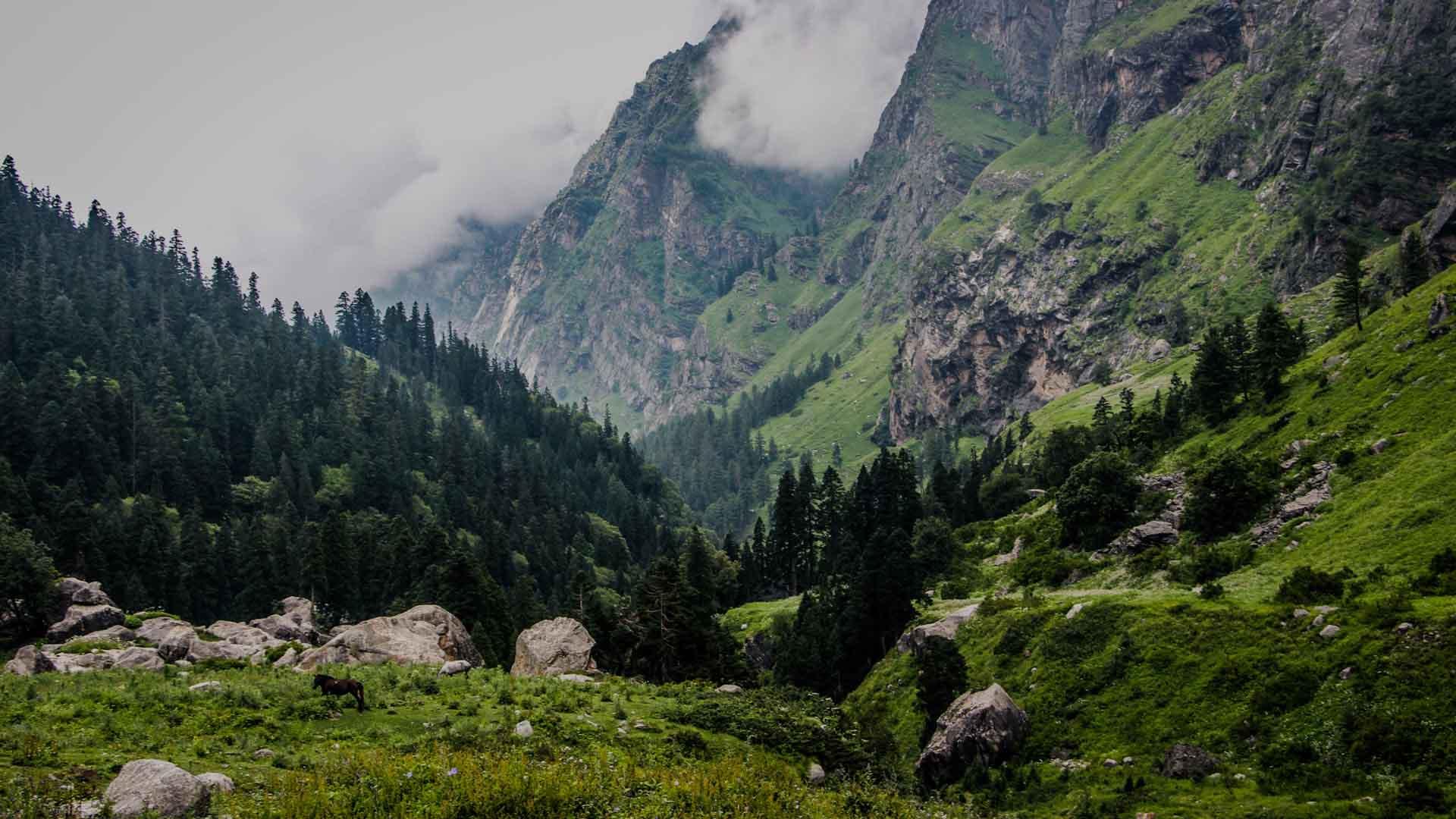 Himachal Pradesh Manali And Kasol   Himachal Pradesh Nature Of God 1920x1080