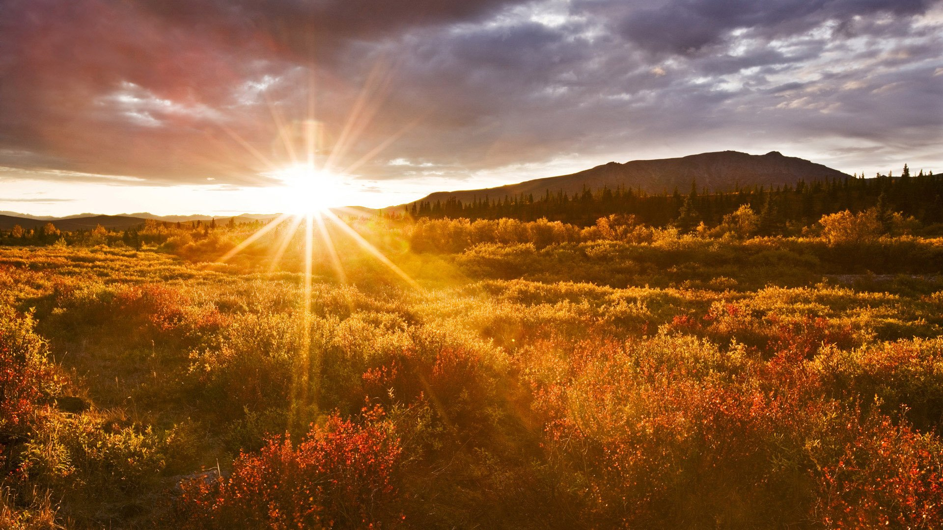 Sunrise Wallpaper Download HD 1920x1080
