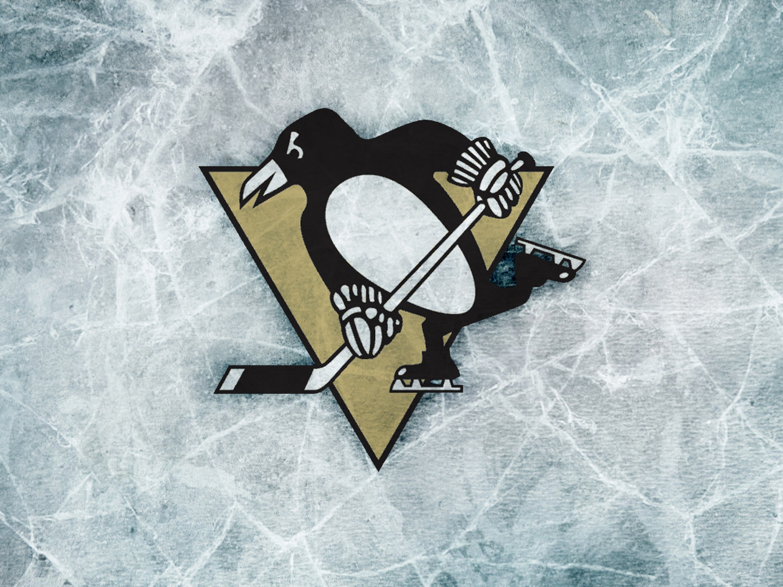 Pittsburgh penguins wallpapers wallpapersafari - Pittsburgh penguins iphone wallpaper ...