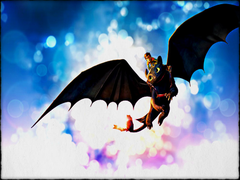 Toothless   Toothless the Dragon Wallpaper 32943771 800x600