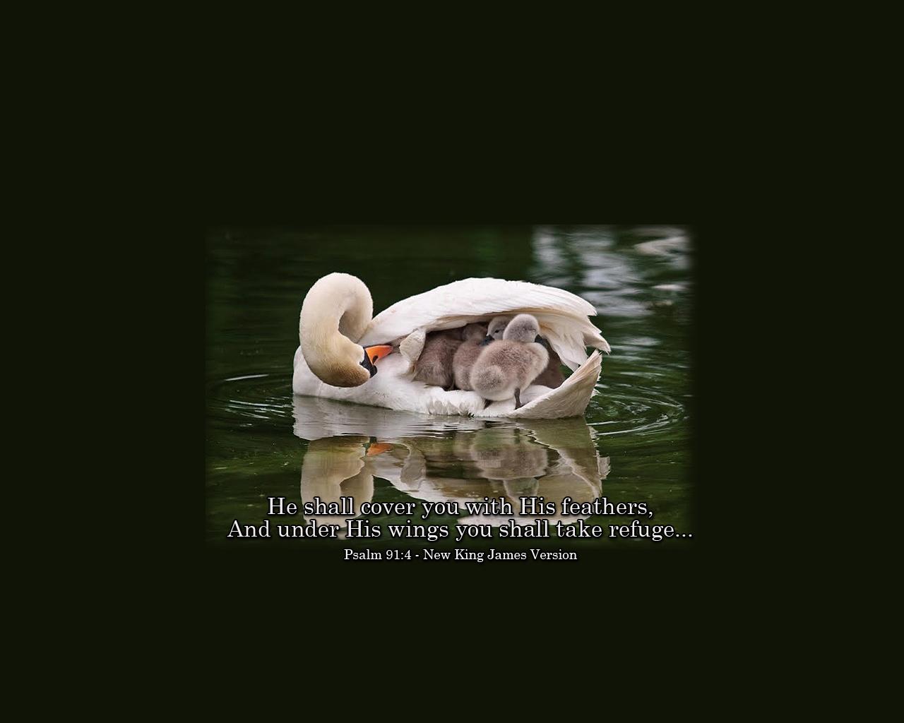 psalm 914 wallpaperjpg 1280x1024