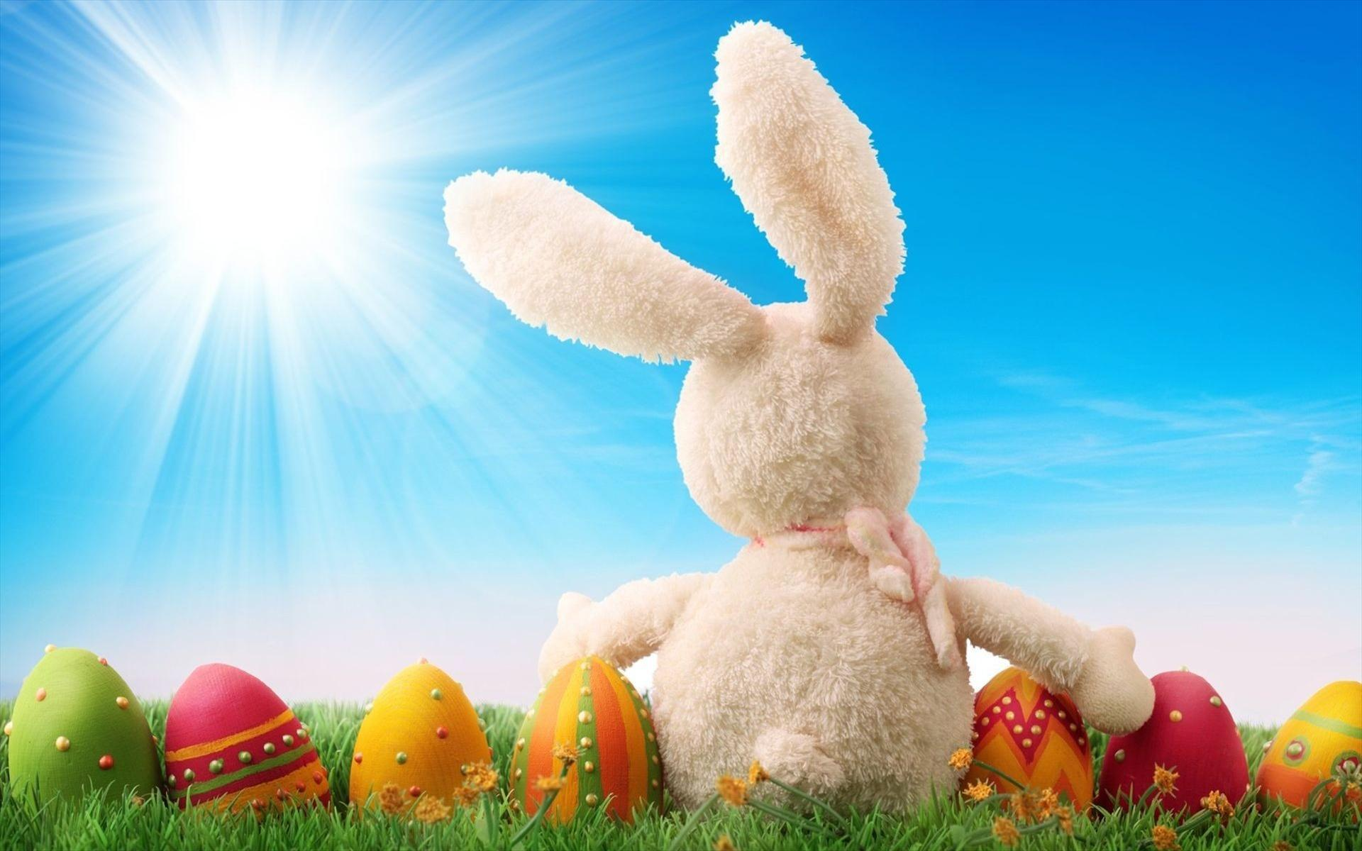 Easter Bunny Wallpapers 1920x1200