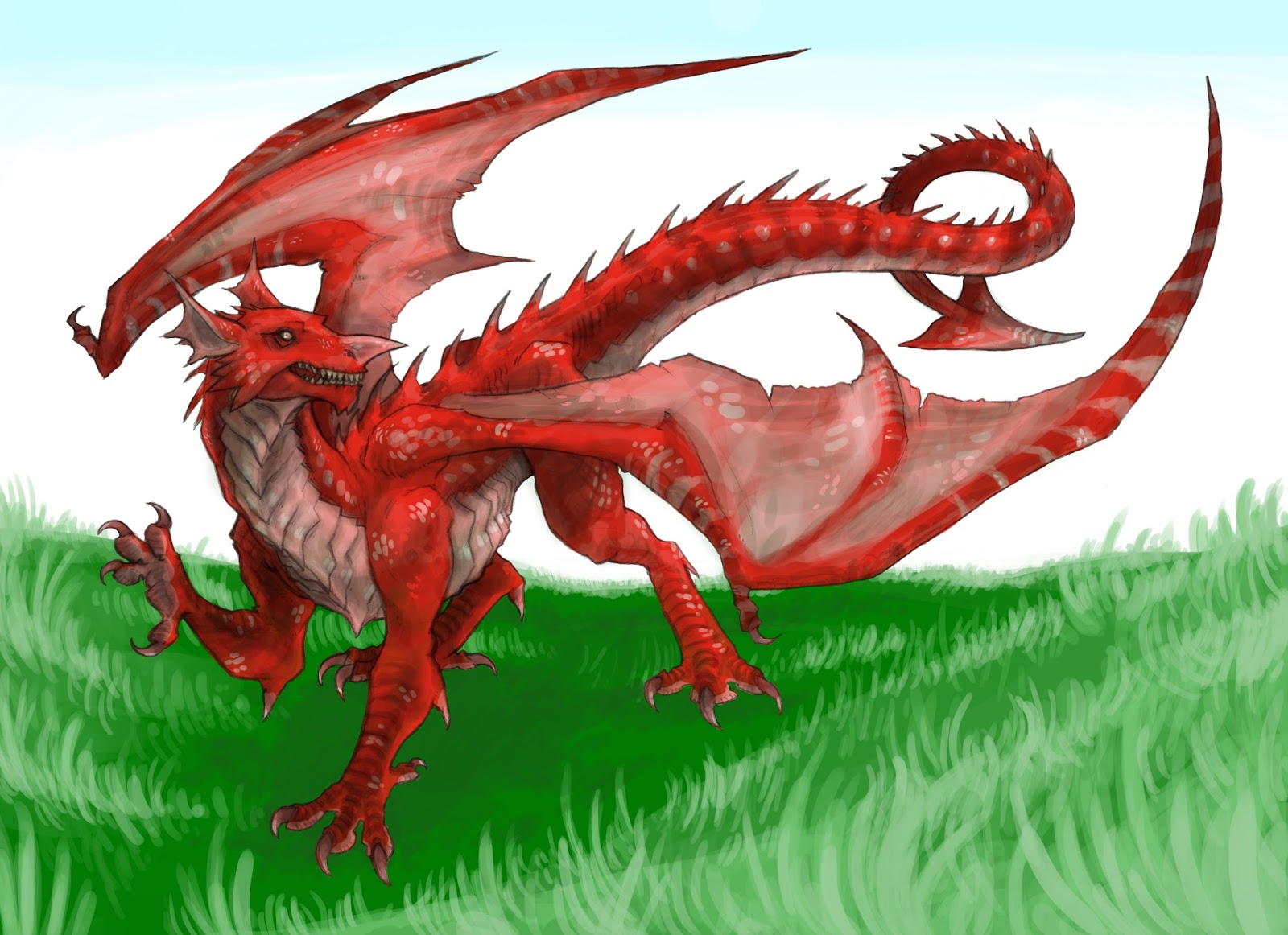 Welsh Flag Drawing of the welsh flag 1600x1162