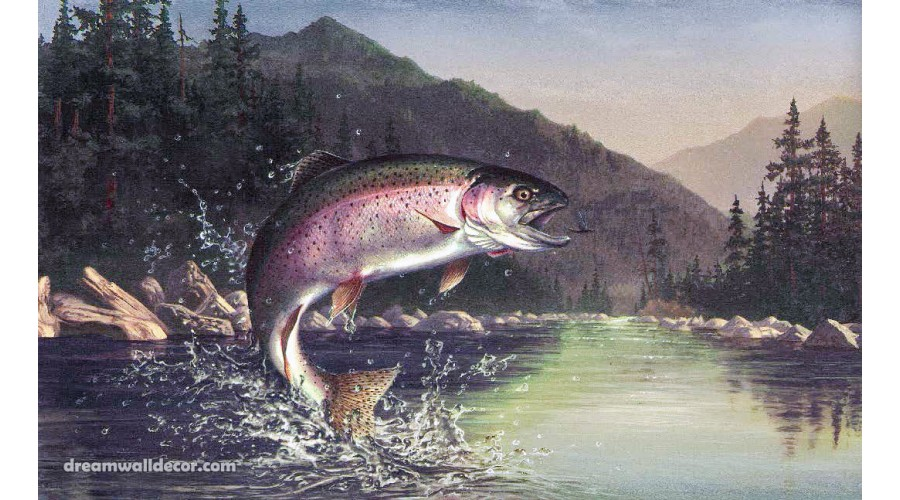 Home Dark Lake Mountain Fish Wallpaper Border 900x500