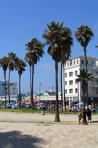 Images and Places Pictures and Info venice beach 320x480
