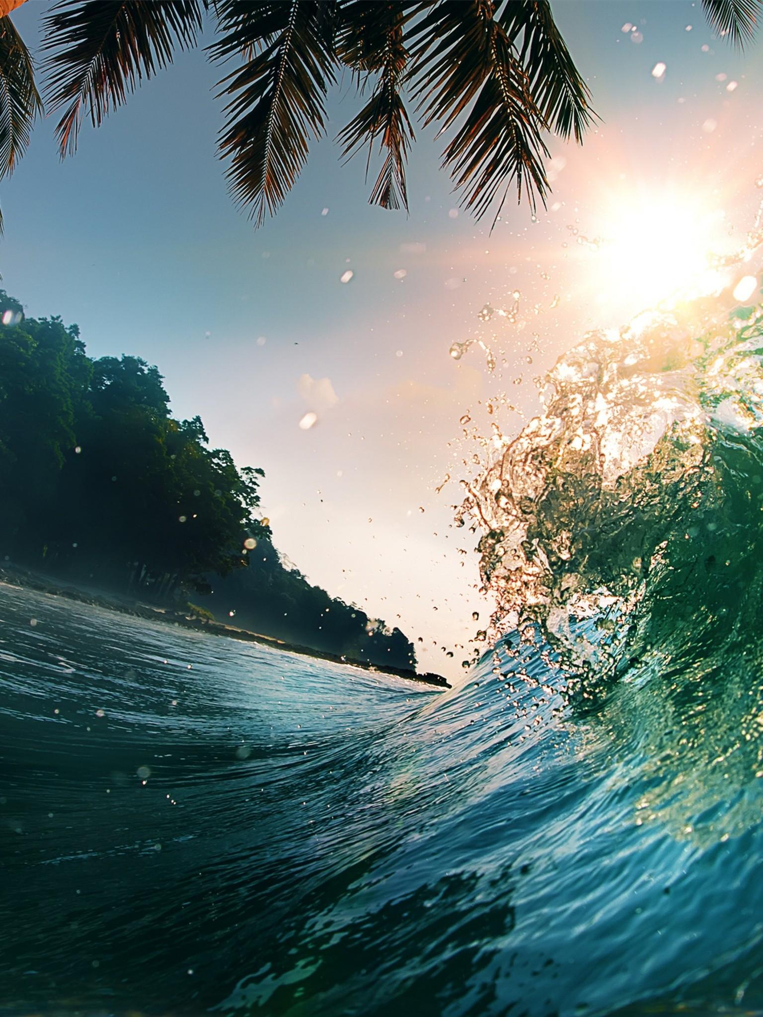 Waves Sea Ocean Beach Palm Trees Wallpaper   [1536x2048] 1536x2048